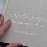 Mindfulnessboek: Mindfulness in het veld van aandacht