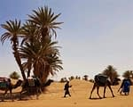 Mindful Walking in Marokko 24 nov - 2 dec 2019