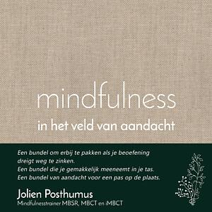 boek Mindfulness in het veld van aandacht