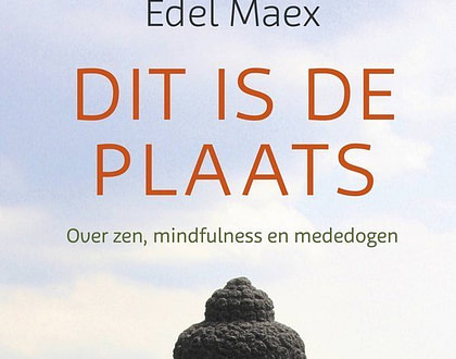 Dit is de plaats - Edel Maex