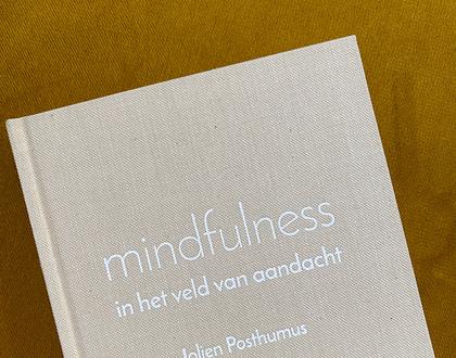 Het boek Mindfulness in het veld van aandacht